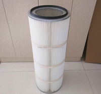 Special Painting Field Vacuum Cleaner Dust Filter Cartridge