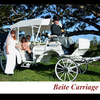 White royal princess wedding horse drawn carriages/carts manufacture