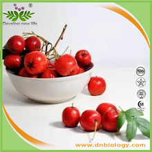 High Quality Health Product 100% Hawthorn Berry Powder