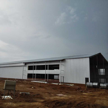 Modern new design low cost pig steel building structure