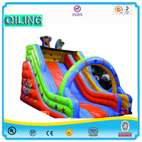 2016 Qi Ling inflatable slip and water slide,inflatable backyard slides,commercial inflatable slide for sale
