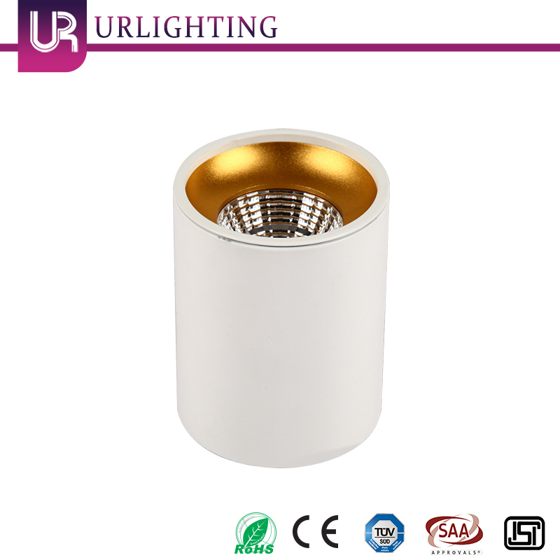 High Quality Round Trimless Surface Mounted COB LED Ceiling Down Light LED Downlight 10W Housing