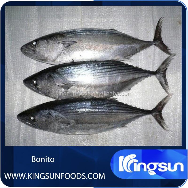 List manufacturers of safe grab bar buy safe grab bar for Tuna fish price