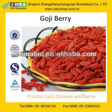 GMP Factory Supply High Quality Import Goji Berries
