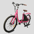 New Lark used ladies electric bike made in China
