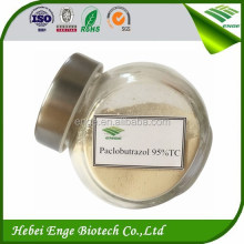 PGR Paclobutrazol 95%TC, plant growth regulator, pesticide agrochemical