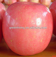 2014 fuji apple hot sale ,China(apple:fuji, huaniu, gala, golden,qingguan, red star)