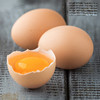 in eggs egg whites what is more healthy white or vitamin in white