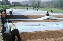 Agriculture Crop Covers Landscape and Agriculture mulch