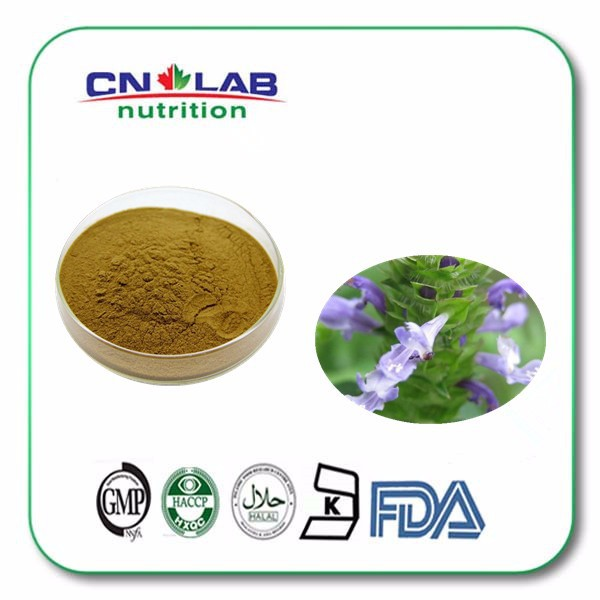 High quality herbal plant Prunella Vulgaris Extract powder 10:1