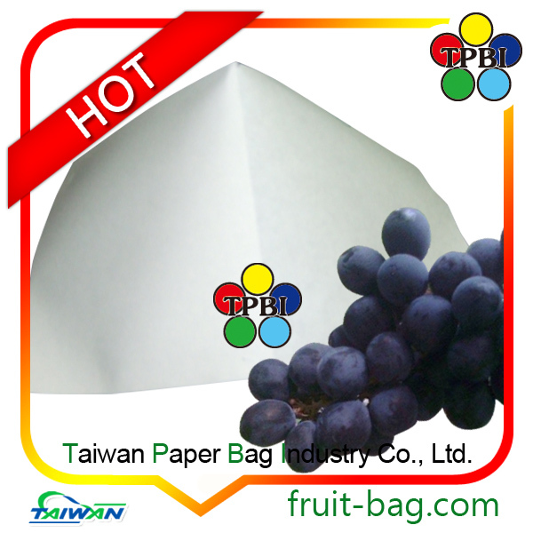 Taiwan factory cheap grape growing cultiviting paper protective bag