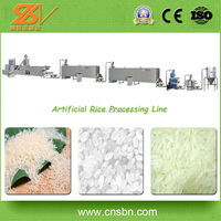 Broken rice reused manufacturer Extruded Rice Making Machine/Nutrition Rice Processing Machinery
