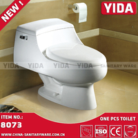 North American siphonic toilet dual flush, one piece toilet with WDI water fitting