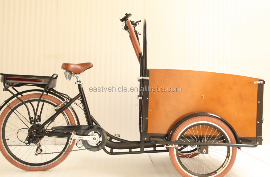 The Latest 3 Wheel Electric cargo bicycle/cargo bike/ bakfiet for Holland adult