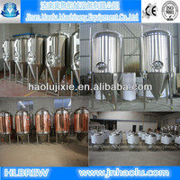 600L SUS304 Hot Sale Beer Fermenters