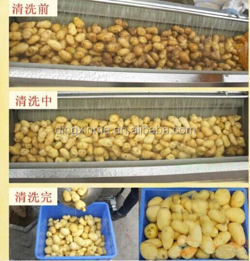 potatoes peeling machine