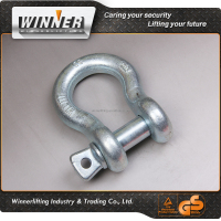 Trustworthy China Supplier d shackle