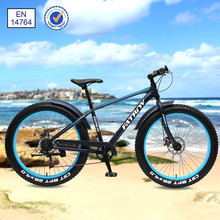 Good price for trendy designed fat tire bike