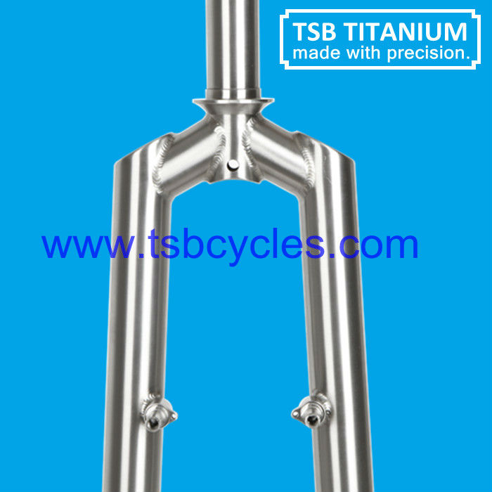 Handmade mountain bike Ti forks for sale in China TSB-FK02