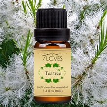 100% Natural Distiallation Pure Tea Tree Essential Oil