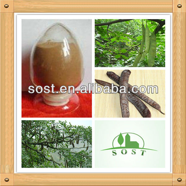 2013 best selling product organic Chinese Honeylocust Fruit extract