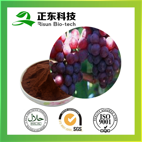 High quality 100% natural grape seed 95% OPC Grape Seed Extract