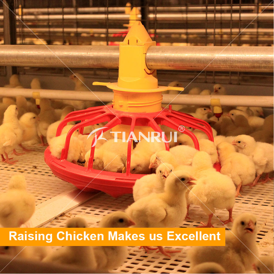 Automatic broiler equipment broiler rearing cage for growing broiler