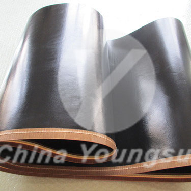 PTFE Seamless <strong>Belt</strong> for Oshima Fusing Machine