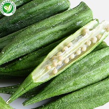 Wholesale Vacuum Fried Dried Vegetable Okra Chips