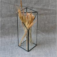 Beautiful geometric hanging terrarium vase