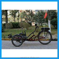 250W 3 wheel motorcycle e trike for sale