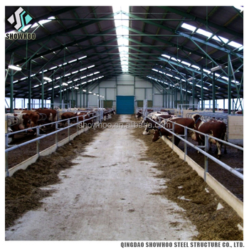 Prefabricated Steel Structure Building Design Cow Farm Shed