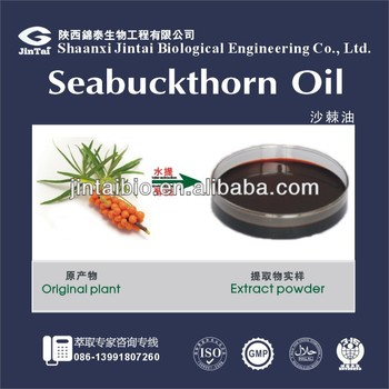 pure natural sea buckthorn oil