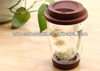 Insulated Double Walled Clear Glass Cup With Silicon Lid & Pad