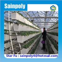 Best Quality Polycarbonate Greenhouse With Hydroponic