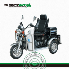 New Design 3 Wheels Disabled Tricycle with Electric or Hand Start by Petrol