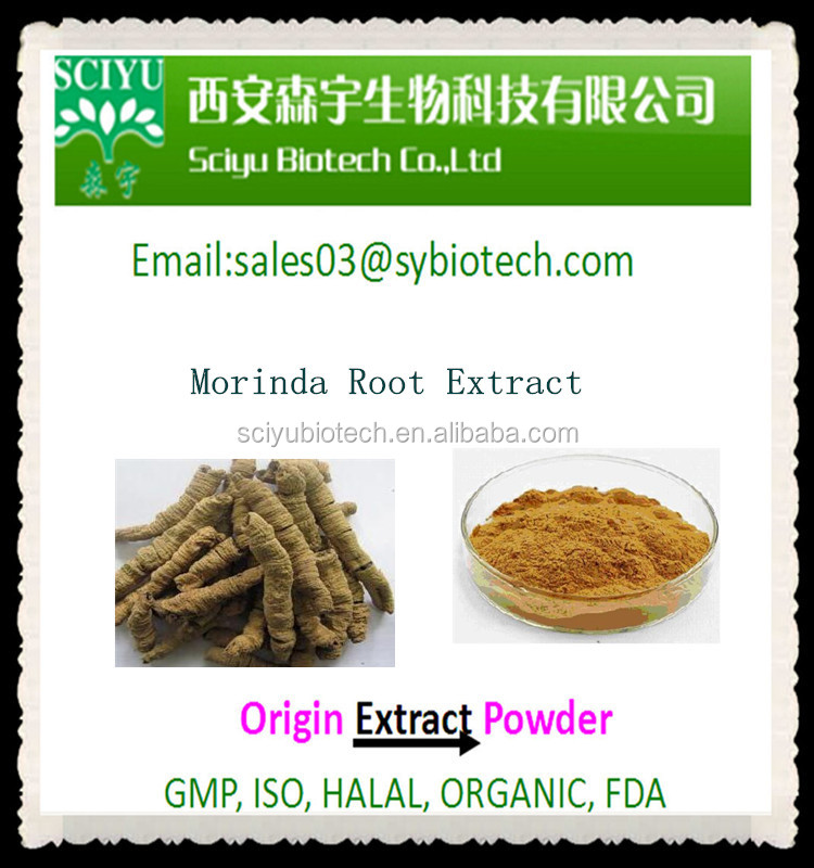 100% Natural Morinda Root Extract 5:1 10:1 20:1