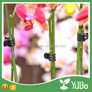 Cheap plastic green orchid plant clip, butterfly orchid support clip for grower