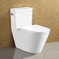 Sanitary Ware WC Item Ceramic Water Closet