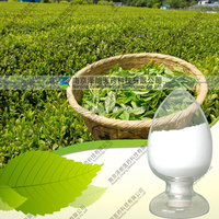 Factory Supply Natural 98% l-theanine