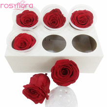 Scientific Names of Flower Longlife Roses Preserved Roses discount