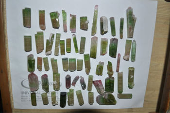 Tourmaline crystals lots in bi and tri colours