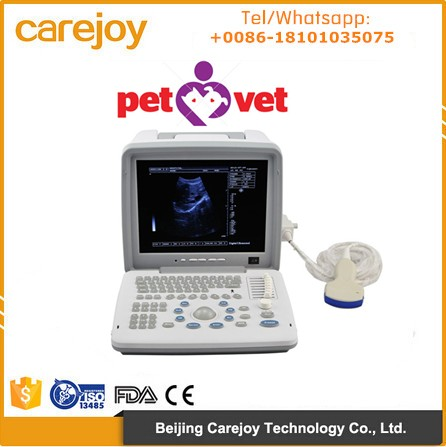 Veterinary Ultrasound Scanner 12 inch with multi frequency probe for vet animal pregnancy RUS-9000BV
