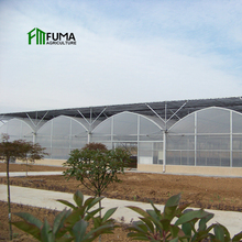 Hot galvanized steel frame agricultural film hydroponic systems smart automatic control greenhouse used for sale