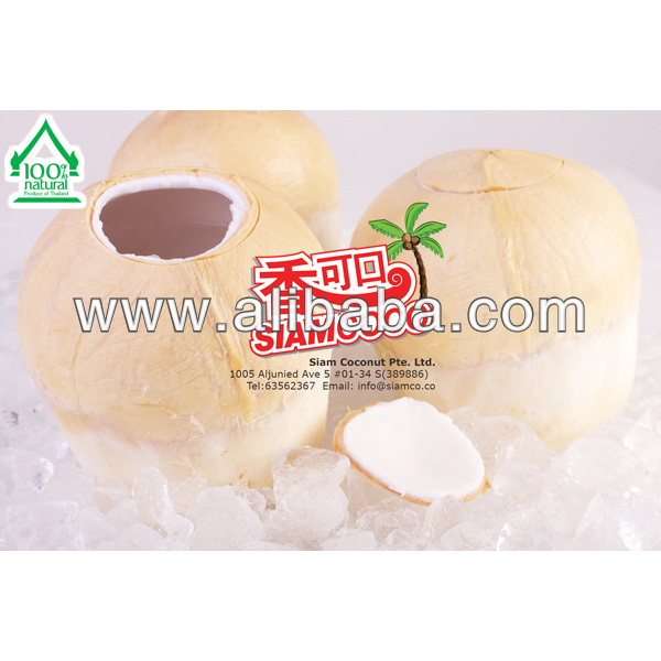 Thai Young Coconut