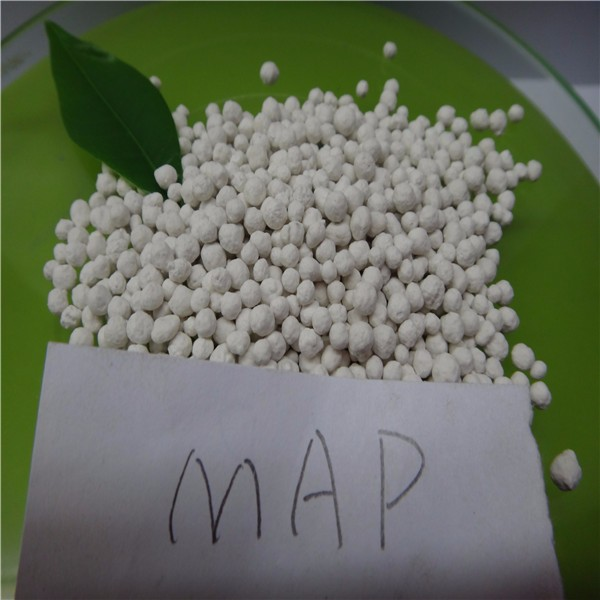 granular Mono Ammonium Phosphate Fertilizer MAP Available P2O5 44%MIN Total N 11%MIN