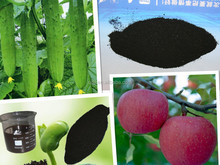 Seaweed extract fertilizer plant fertilizer agriculture 100% water soluble amino acid fertilizer