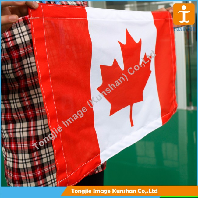 Factory wholesale 100% polyester body cape flag