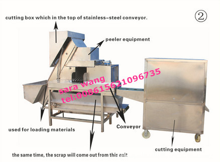 Hot sale automatic onion peeling machine with root cutting and removing machine /008615621096735