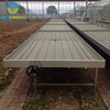 Agricultural Greenhouse Movable Seedbeds
